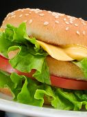 picture of hamburger-steak  - Hamburger with steak cheese tomatoes and salad - JPG