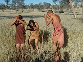 Bushmen Hunters In A Fields Search