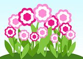 Pink flower on meadow. Vector illustration