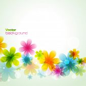 pic of white flower  - beautiful colorful flower eps10 vector illustration - JPG