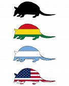 Armadillo Flags
