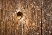 Knothole In Wood