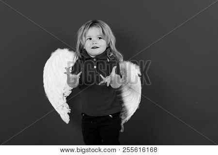poster of Adorable Little Angel Boy With White Feather Wings And Halo, Happy Kid With Smiling Face And Blonde