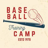 Baseball Training Camp. Vector Illustration. Concept For Shirt Or Logo, Print, Stamp Or Tee. Vintage poster