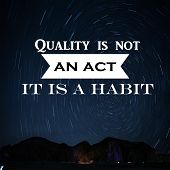 Motivation Quote Quality Is Not An Act It Is A Habit,positive, Motivational poster