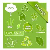 Vector set of ecological icons and design elements