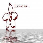 Love Is Reflecting
