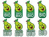 Bio Pear Seal / Mark / Icon