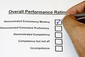 Overall Performance Rating Form