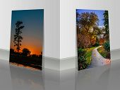 Two Pictures Near The Wall. Wet Asphalt Walkway Between Colorful Bushes And Trees In The Park. Black poster