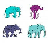 Elephant Icon Set. Color Outline Set Of Elephant Icons For Web Design Isolated On White Background poster