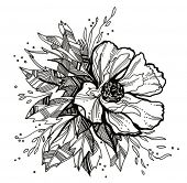 flower drawing - for VECTOR version please visit my portfolio