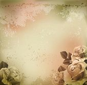 Vector Grunge, Vintage Background mit Rosen