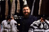 Guy With Happy Face Shows Fur Coats In Fashion Store. Man With Beard And Mustache In Fur Shop. Shop  poster