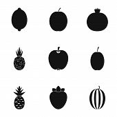 Orchard Fruits Icons Set. Simple Illustration Of 9 Orchard Fruits Icons For Web poster