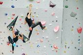 Couple Practicing Rock Climbing On Artificial Wall Indoors poster