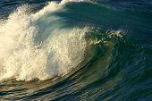 Wave Energy Power