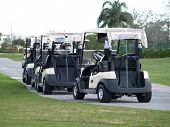 Golf Cart Line Up