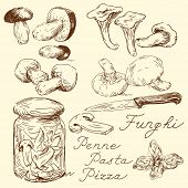 stock photo of agaricus  - mushroom doodles - JPG