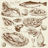 image of crustaceans  - hand drawn sea food - JPG