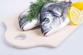 Two Gilthead Fishes On A Cutting Board