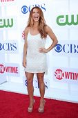 LOS ANGELES - JUL 29:  Poppy Montgomery arrives at the CBS, CW, and Showtime 2012 Summer TCA party a
