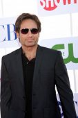 LOS ANGELES - JUL 29:  David Duchovny arrives at the CBS, CW, and Showtime 2012 Summer TCA party at