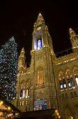 Vienna City Hall At Christmas