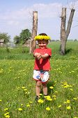 Child And Dandelions