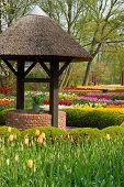 well in spring garden