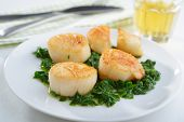 Roasted scallops with spinach on a plate