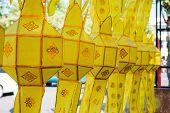 foto of crotons  - Paper lantern decorations - JPG
