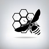 image of bee cartoon  - Silhouette of bees and honey - JPG