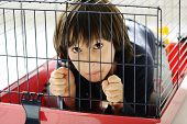 picture of caged  - Kid in cage prisoned - JPG