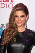 LOS ANGELES - DEC 6:  Maria Menounos at the KIIS FM Jingle Ball 2013 at Staples Center on December 6, 2013 in Los Angeles, CA