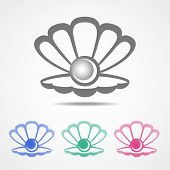 Vector shell icon with a pearl in different colors
