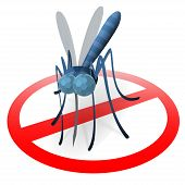 foto of mosquito  - Stop mosquito sign - JPG