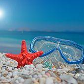Seastar And Mask