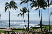 image of poi  - KAUAI, HI - December 16, 2013. The Sheraton hotel and resort in Poi