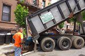 Contractors unloading new trees