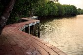Nature Trails bridge In Mangrove forest