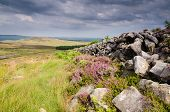 Dry Stone Wall On Simonside Hills