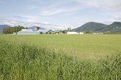 Southern British Columbia
