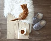 Still life details, cup of coffee on rustic bench, top view point