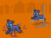 Dog Agility Training Cartoon