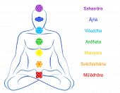 picture of sanskrit  - Seven main chakras   - JPG