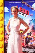 LOS ANGELES - FEB 1:  Brie Larson at the