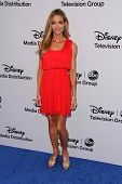 LOS ANGELES - MAY 19:  Denise Richards at the Disney Media Networks International Upfronts at Walt Disney Studios on May 19, 2013 in Burbank, CA