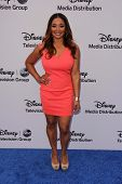 LOS ANGELES - MAY 19:  Tamala Jones at the Disney Media Networks International Upfronts at Walt Disn