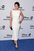 LOS ANGELES - MAY 19:  Emilie de Ravin at the Disney Media Networks International Upfronts at Walt D